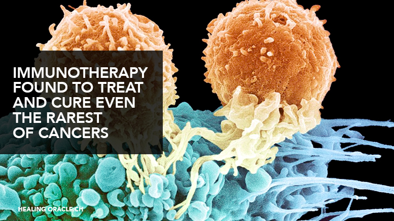 Immunotherapy found to treat and cure even the rarest cancers