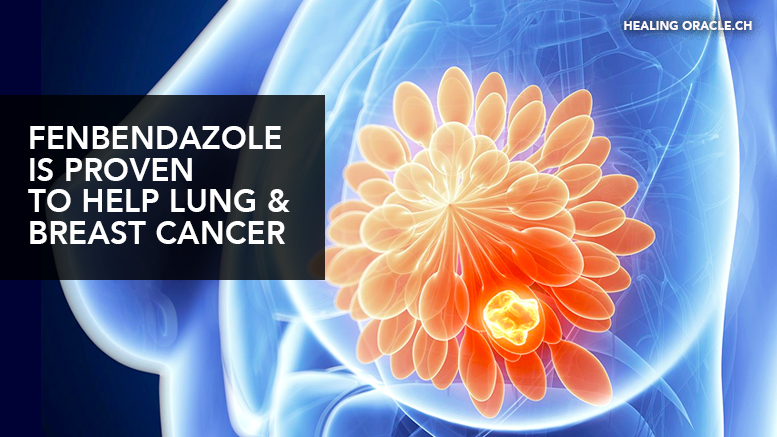 Fenbendazole/ mebendezole have been clinically proven to help with lung & breast cancer
