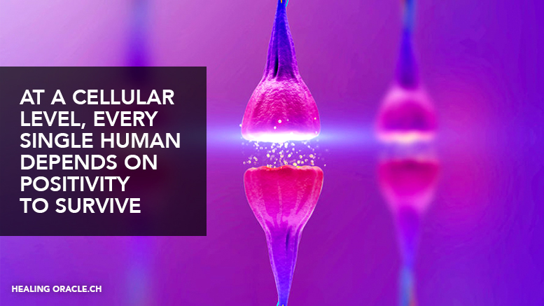 At a cellular level, every single human depends on positivity to survive