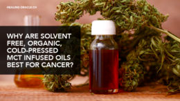 MCT infused Cannabis oil is best for cancer
