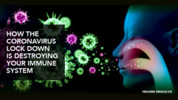 Our immune systems are under attack under the CoVID-19 lockdown